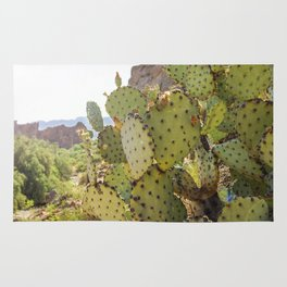 Superstition Cactus Rug