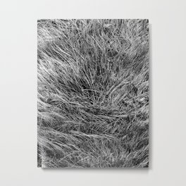 This is not Hair. Metal Print