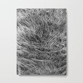 This is not Hair. Metal Print