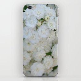 Deutzia Pure and Simple iPhone Skin