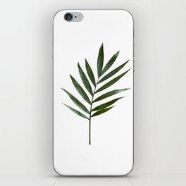 Plant Leaves iPhone Skin