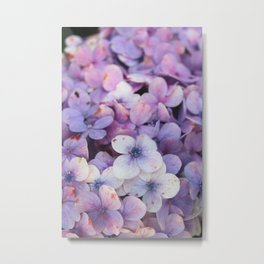Blossom Purple Metal Print