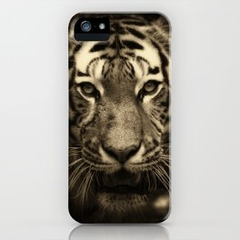 Growling Tiger Face in Sepia Tones iPhone Case