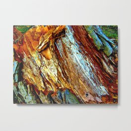 Colorful Nature 1 Metal Print