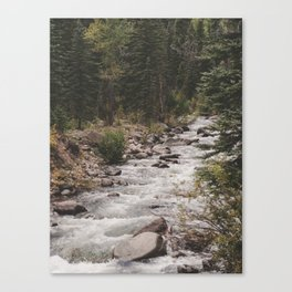 Stream of Consiousness Canvas Print