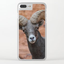 Desert Bighorn, Valley of Fire - IV Clear iPhone Case