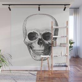 Vintage Illustration, Skull Wall Mural