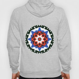 Bold and bright beauty of suzani patterns ver.7 Hoody
