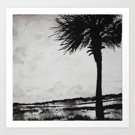Palm Tree on the Marsh Art Print