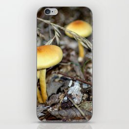 Concept nature : The unkown mushrooms iPhone Skin