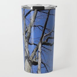 Bare Trees and Blue Skies Travel Mug
