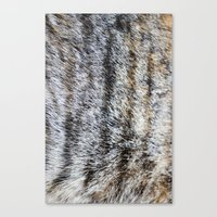 furry Canvas Prints featuring Furry by Courtney Spencer