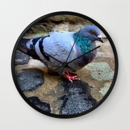 Pigeon in Girona, Spain Wall Clock