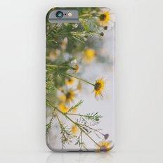 Under the light iPhone 6s Slim Case