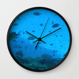 Early morning fish bustling about Wall Clock