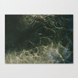 HYDROMUSE Canvas Print