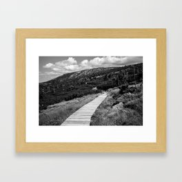 Black and White Tundra Framed Art Print