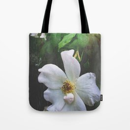 Flowers at Dusk Tote Bag