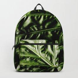 Rib And Veins Backpack
