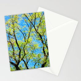 Full of Life Stationery Cards