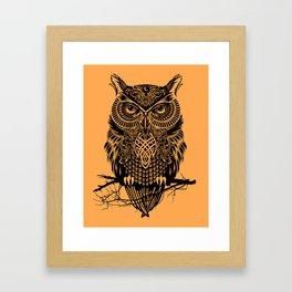 Warrior Owl 2 Framed Art Print