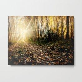 Walking cross autumn Metal Print