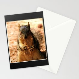 Contented Squirrel. © J. Montague. Stationery Cards