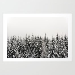 Winter Trees IV - Snow Capped Forest Adventure Nature Photography Art Print