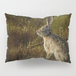Hare Pillow Sham