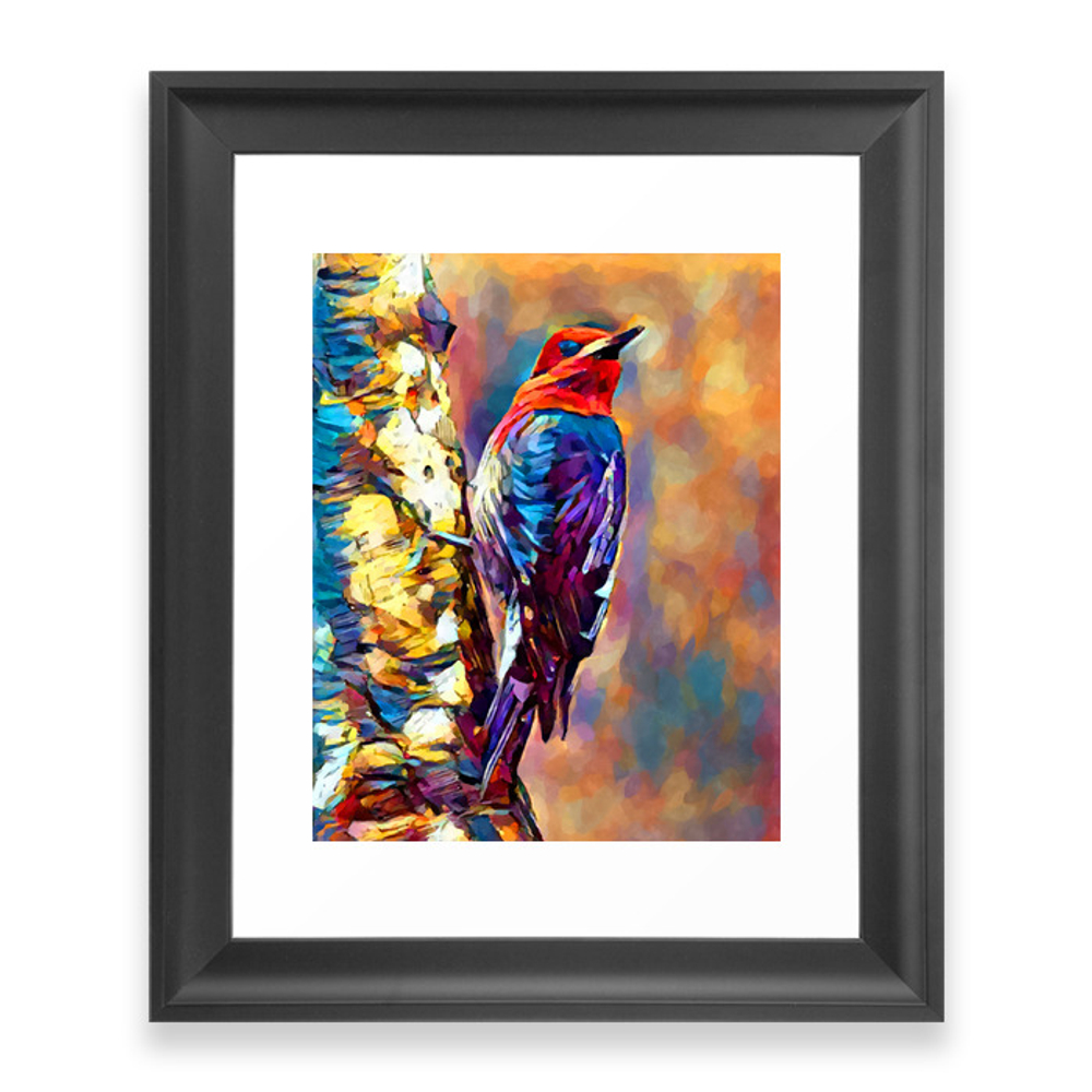 Red-Breasted Sapsucker Framed Art Print by shrenk (FRM9010163) photo