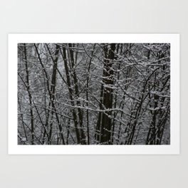 Snowy Day 2 Art Print