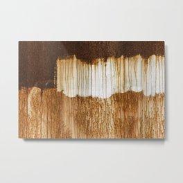 Rust 03 Metal Print