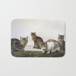 Picture of cats Bath Mat