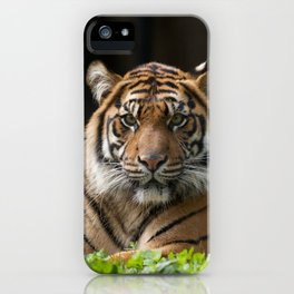 Look into my eyes by Teresa Thompson iPhone Case