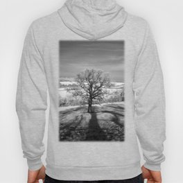 Lone tree over the East Somerset Railway Hoody