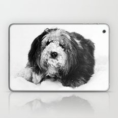 Dog Laptop & iPad Skin