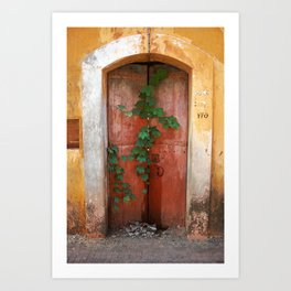 Door of a house in Panaji, Goa, India Art Print