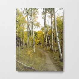 Slow and Quiet, too wonderful to hurry Metal Print