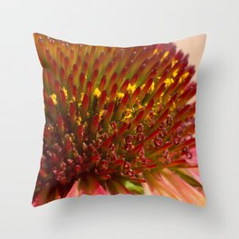 Cone flower colors Throw Pillow