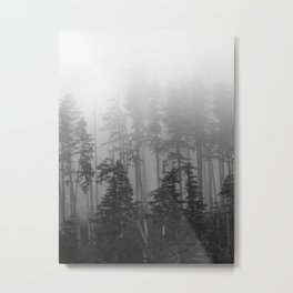 Foggy Forest, Chinook, Washington, Grey Photography Print Metal Print