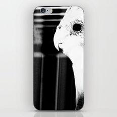 the parrot john iPhone & iPod Skin