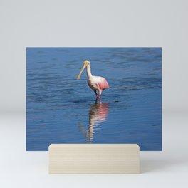 Roseate Spoonbill at Ding IV Mini Art Print