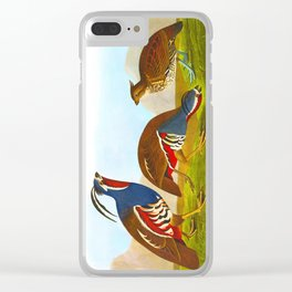 Plumed Partridge and Thick-legged Partridge Clear iPhone Case