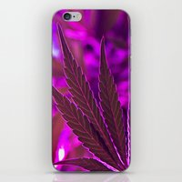 cannabis iPhone & iPod Skins featuring Cannabis  by End Of Prohibition