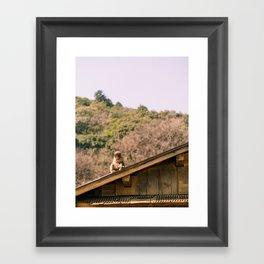 Monkey park Framed Art Print