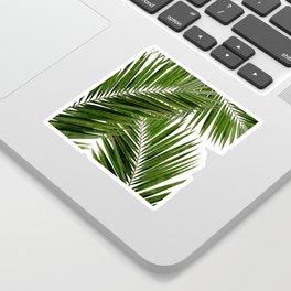Palm Leaf III Sticker