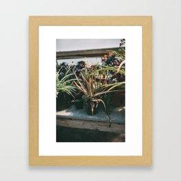 Hipster Paradise  Framed Art Print