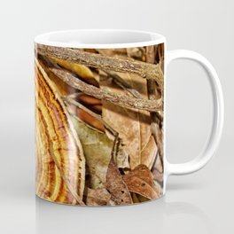 Beautiful Bracket Fungi Coffee Mug