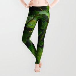 Wet Greens Leggings