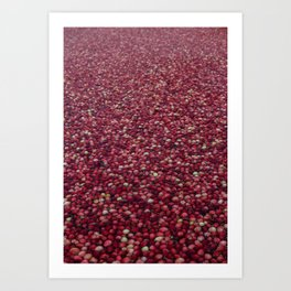 cranberry party Art Print